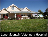Lone Mountain Vet